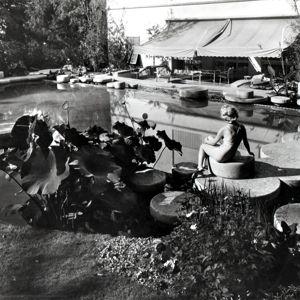 Giardino con piscina e serra - Villa La Terrazza photo n.3 ...