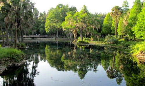 Crystal Springs Preserve Florida City Outdoor Crystal Springs