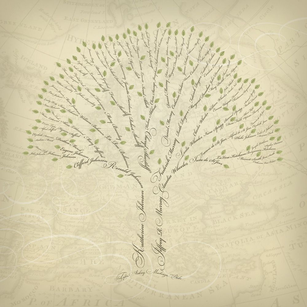 Family Tree Design Ideas how to draw a family tree 10 steps with pictures wikihow 1000 Images About Family Tree On Pinterest Family Trees Wood Burning And Tree Slices