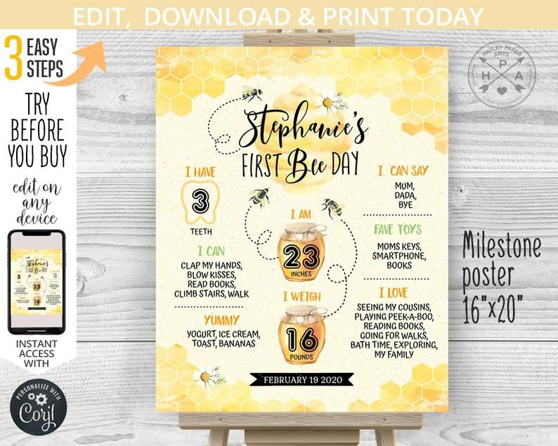 Bee 1st Birthday Chalkboard Sign Stats Board Pink Bumble Party Theme Poster Decor Milestone Printable File