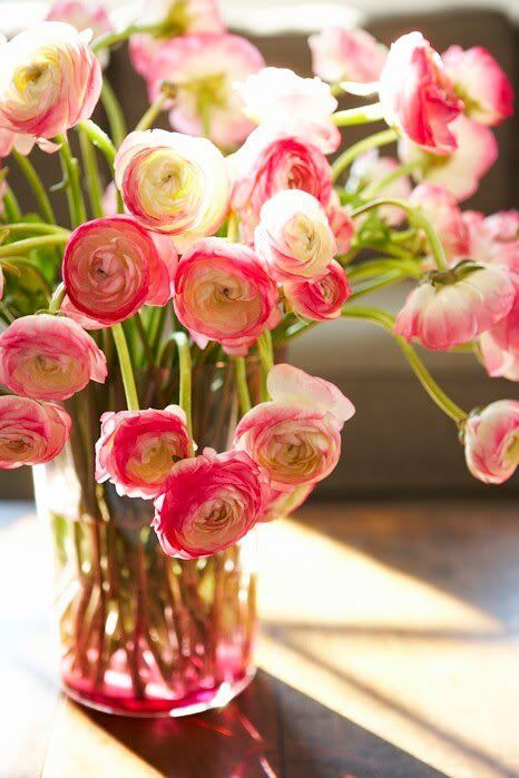 Ranunculus These Are One Of My All Time Favorite Flowers I Love That They Look Like A Poppy And A Rose A Pretty Flowers Blooming Flowers Flower Arrangements