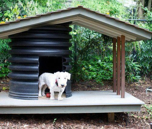dog kennel under deck #dogkennelunderdeck (With images ...