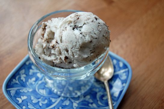 mint chocolate chip ice cream with coconut milk
