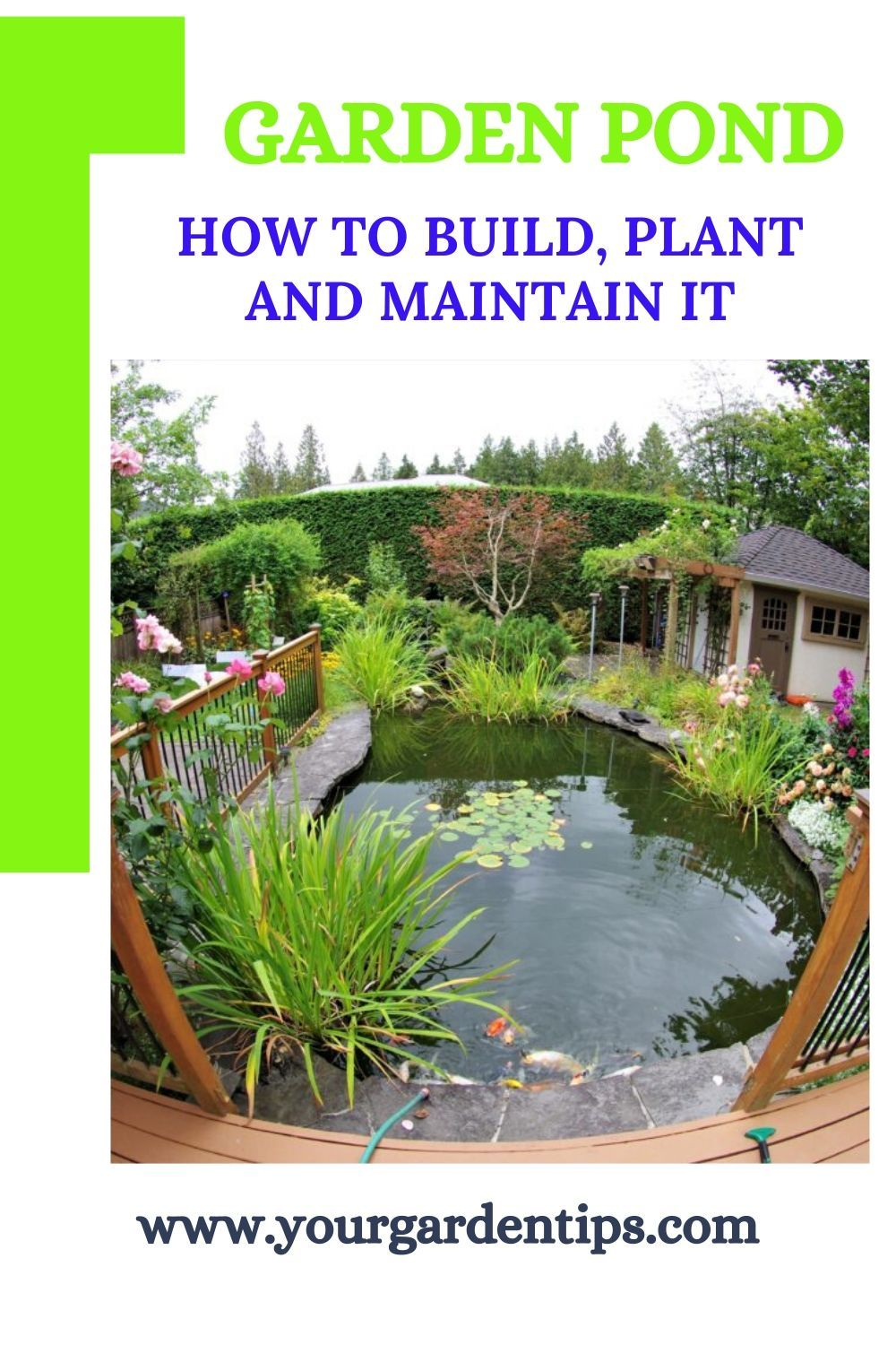 Garden ponds are a complex, small ecosystem. You can find out here how to plan and create a pond, how to get algae under control and why plants are essential.  #garden #gardendesign #gardenlover #gardenstyle #gardening_love