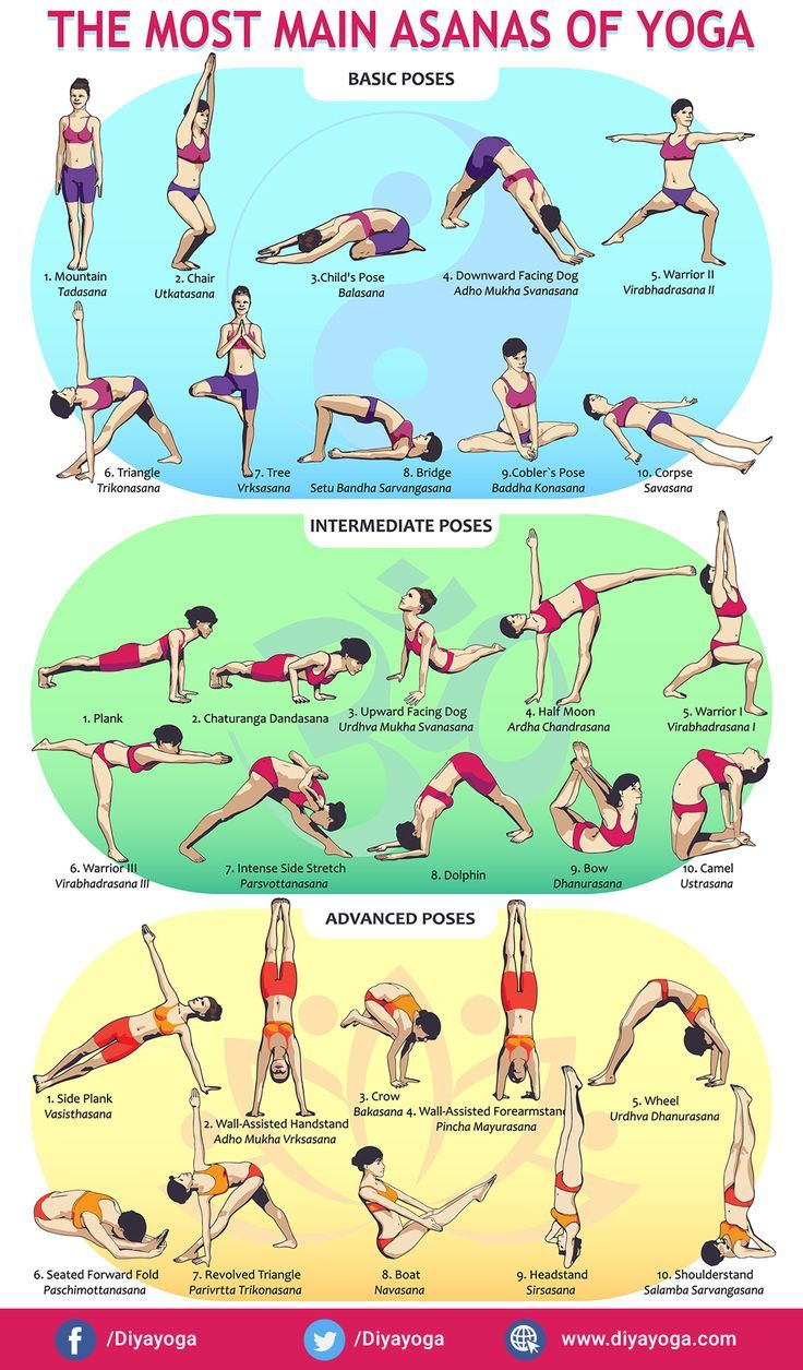 Yoga Poses & Asanas - Basic to Advanced