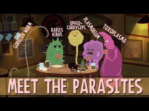 The biggest challenge in a parasite's life is to move from one host to another. Intriguingly, many parasites have evolved the ability to manipulate the behavior of their hosts to improve their own survival -- sometimes even by direct brain control. Jaap de Roode details a few parasites that can really mess with the mind.