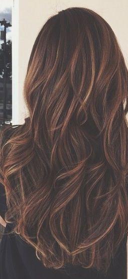 Long Brunette Caramel Highlights Colored Hair Tips