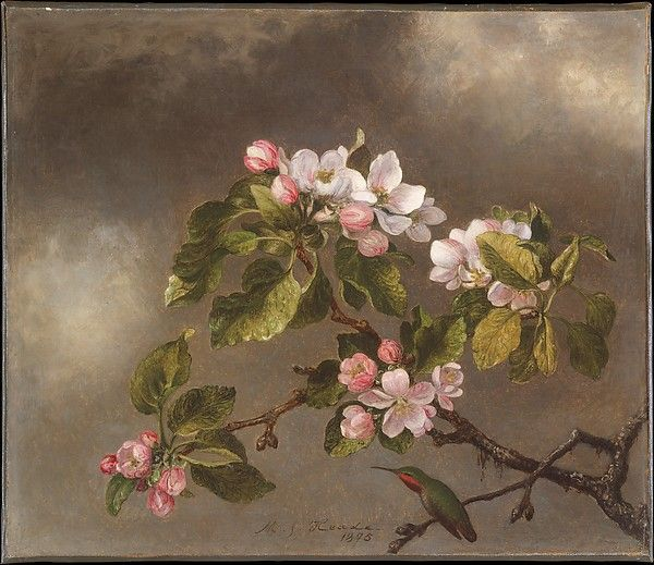 BRANCH OF APPLE BLOSSOMS FLOWERS A CLOUDY DAY PAINTING MARTIN JOHNSON HEADE REPO