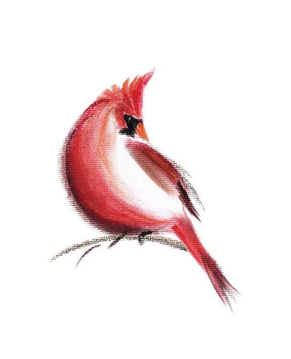 Cardinal art print of pastel drawing bird red spring for Small cardinal tattoo