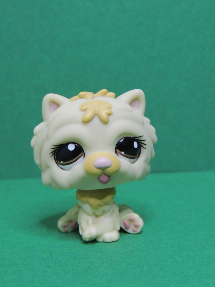 1058 chien dog cream chow chow purple eyes lps littlest - Chien pet shop ...