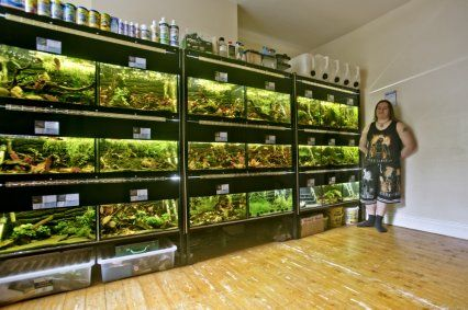 Your fish houses: Peter Clarke