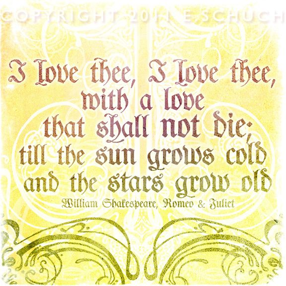 Romeo And Juliet Quotes Shakespeare Love Quote Immortal Longings  Elizabeth E Schuch .