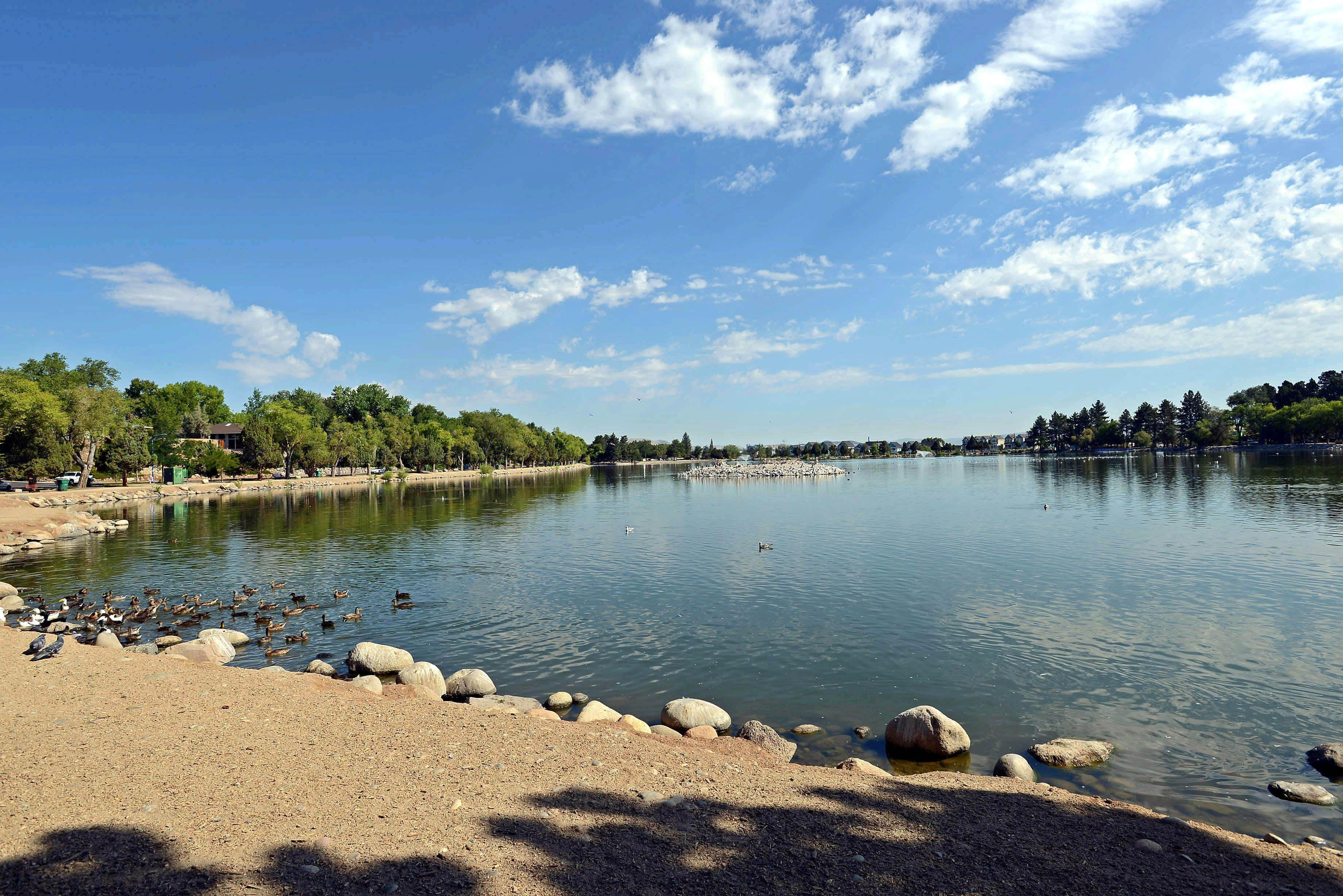 Virginia Lake Reno Beautiful Homes And Townhomes Surround The