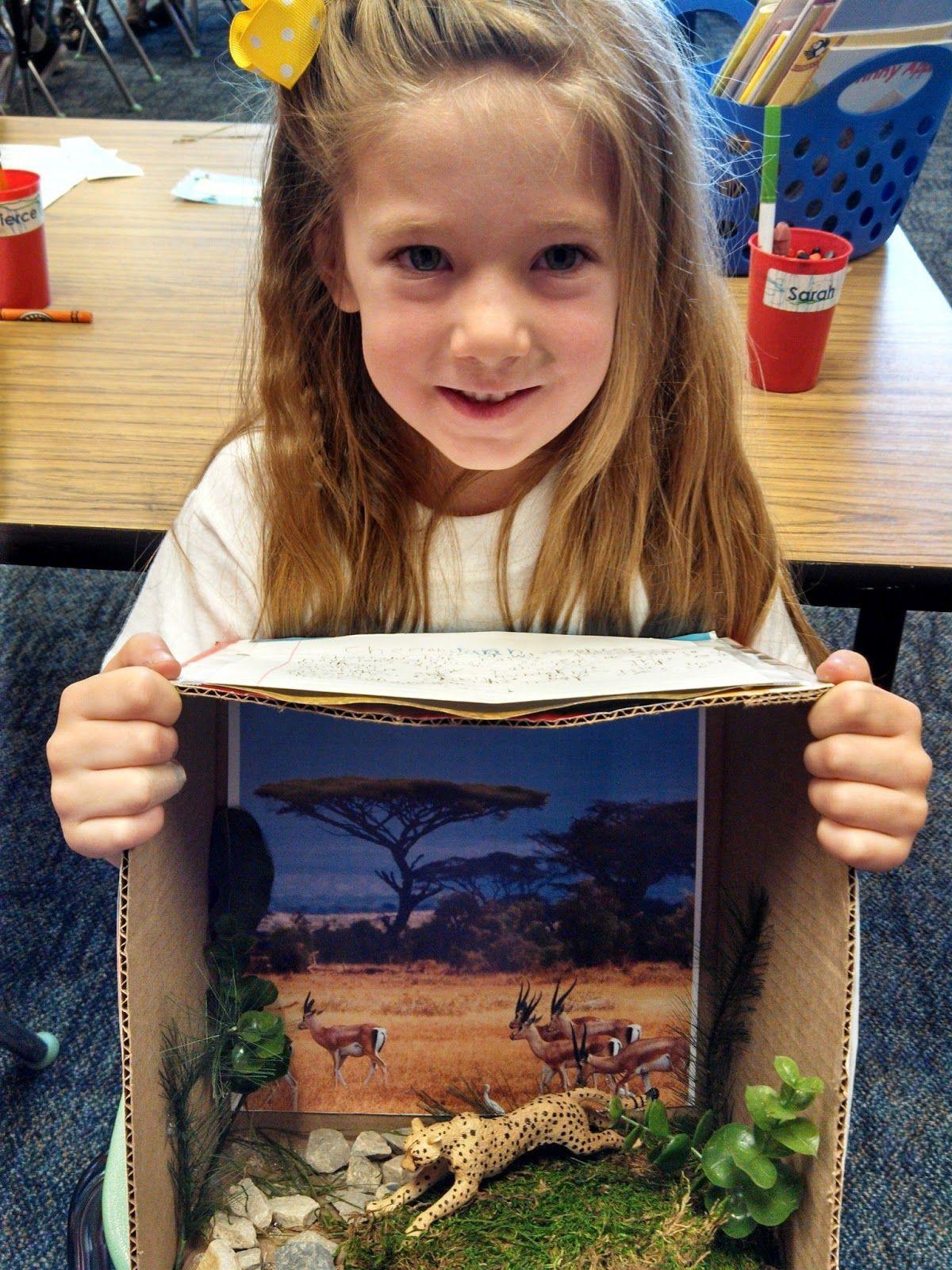 Cheetah Project Kindergarten