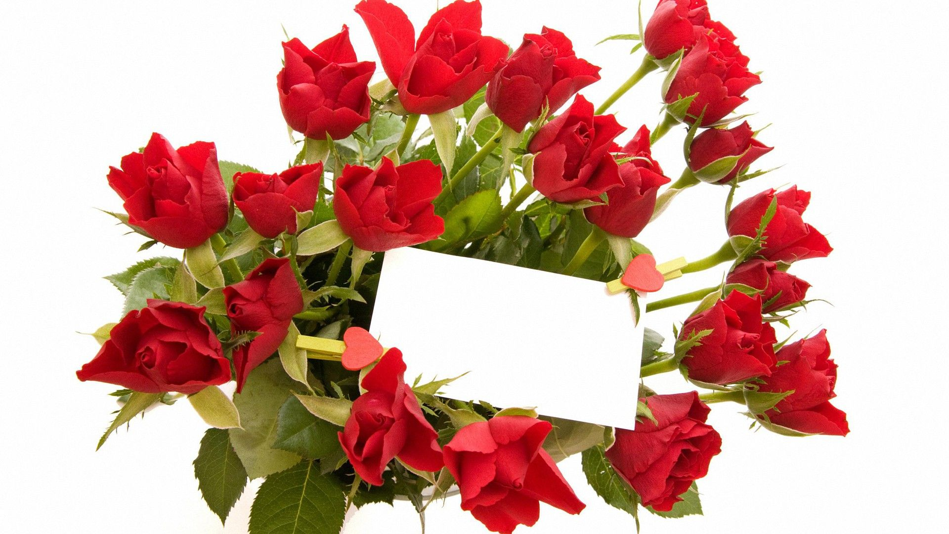 Sweet Valentines Day Rose Hd Wallpapers Valentines Day Wallpapers