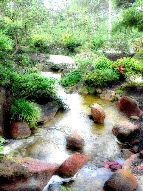 Morikami Japanese Gardens, Boca Raton, Florida