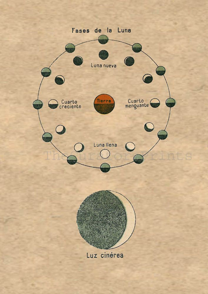 Old Moon In New Moons Arms >> Moon Phases And Earthshine Astronomy Print To Frame Sun Moon