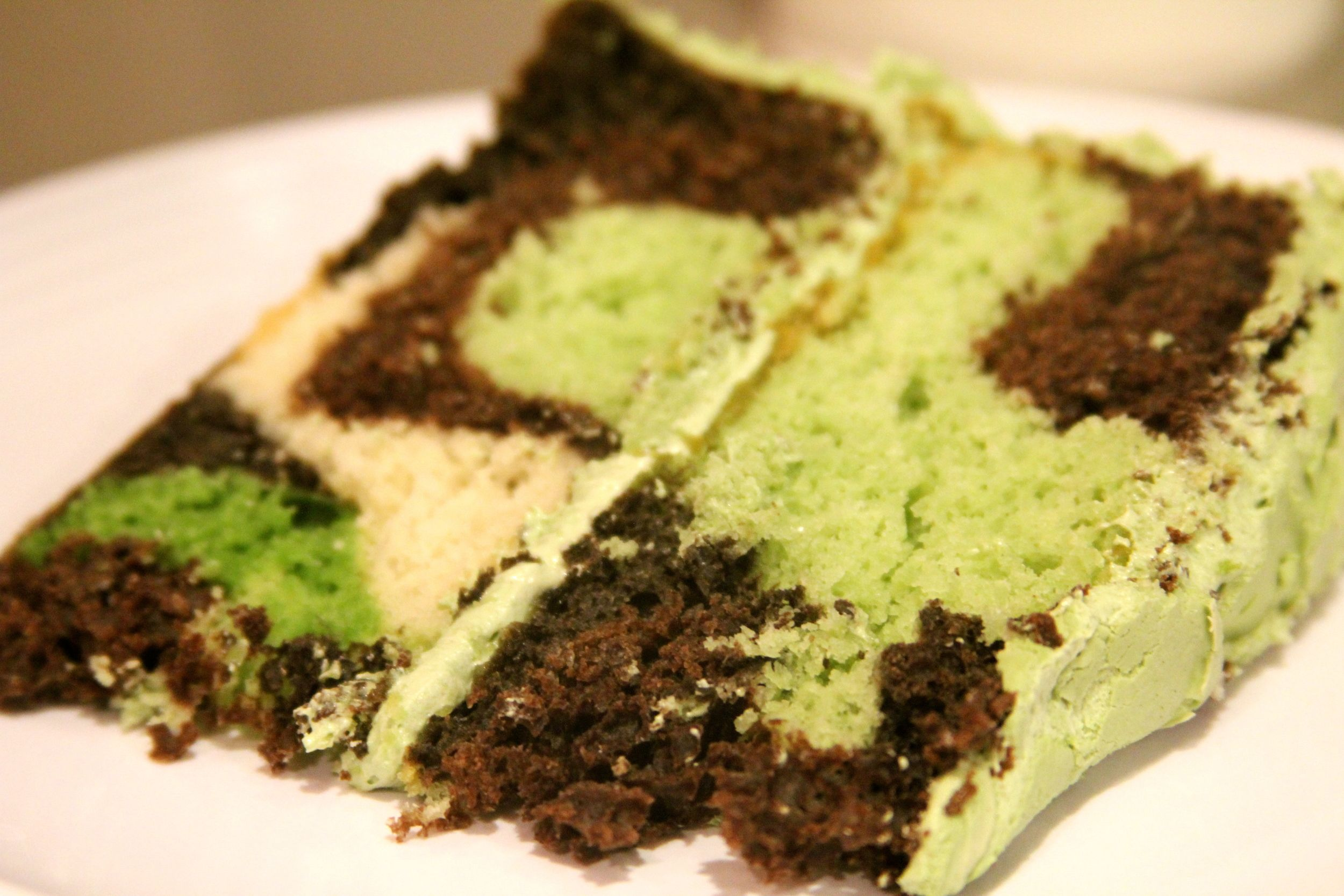 making a camouflage birthday cake {tutorial} Army