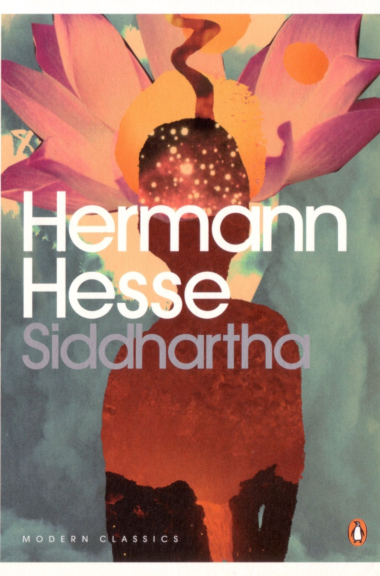 Modern Classic Book Covers ~ Hermann hesse siddhartha book covers pinterest