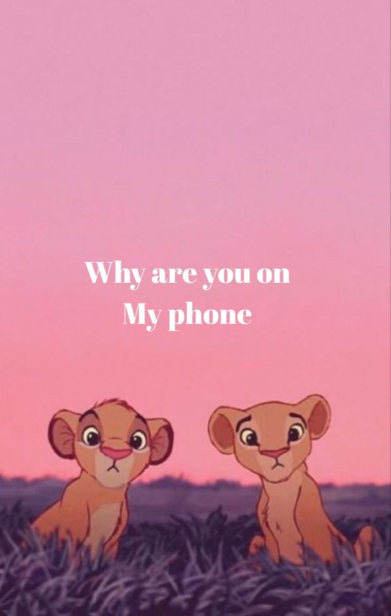 Why Are U In My Room Funny Phone Wallpaper Funny Wallpapers Funny Iphone Wallpaper
