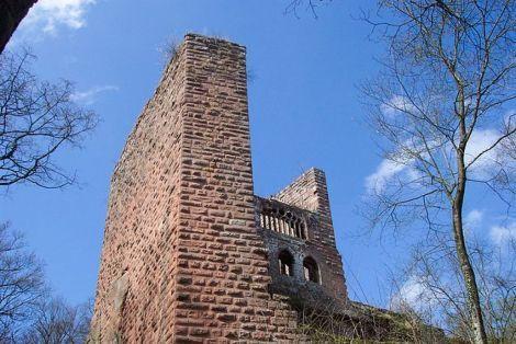 Château de la Wasenbourg - Niederbronn-les-Bains