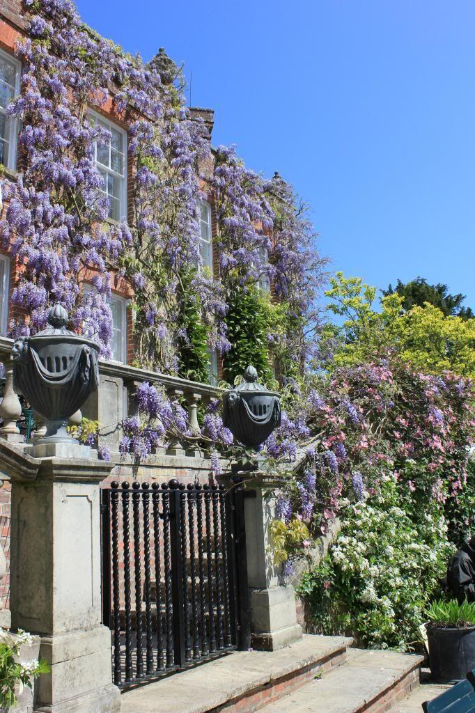Pashley Manor Gardens (Kent)