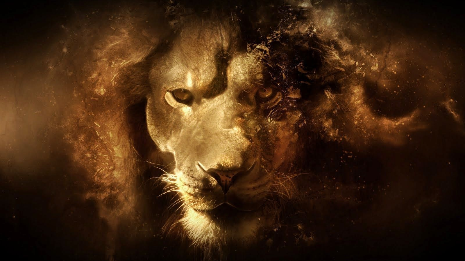 Narnia Aslan Wallpaper | HD Wallpapers | Pinterest | Hd wallpaper ... for Narnia Aslan Wallpaper  557yll
