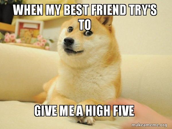 When My Best Friend Try S To Give Me A High Five Doge Make A Meme Funny Birthday Meme Thank You Memes Doge Meme