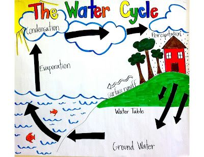 The Water Cycle - 5th grade land & water unit. - This pin has lots ...
