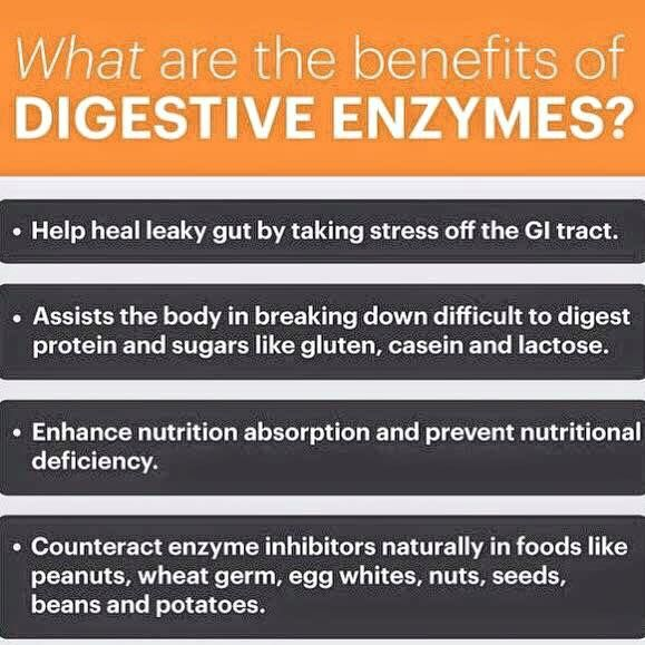 What Is The Benefit Of Taking Enzymes