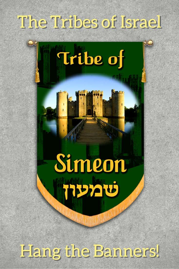 Tribes Of Israel Tribe Of Simeon Printed Banner Biblia Mujer