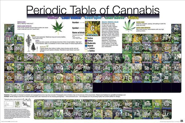 New - Periodic Table of Cannabis Weed Pot Marijuana Poster - new periodic table image