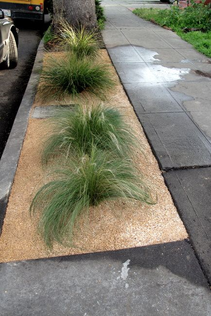 diy curbside landscaping