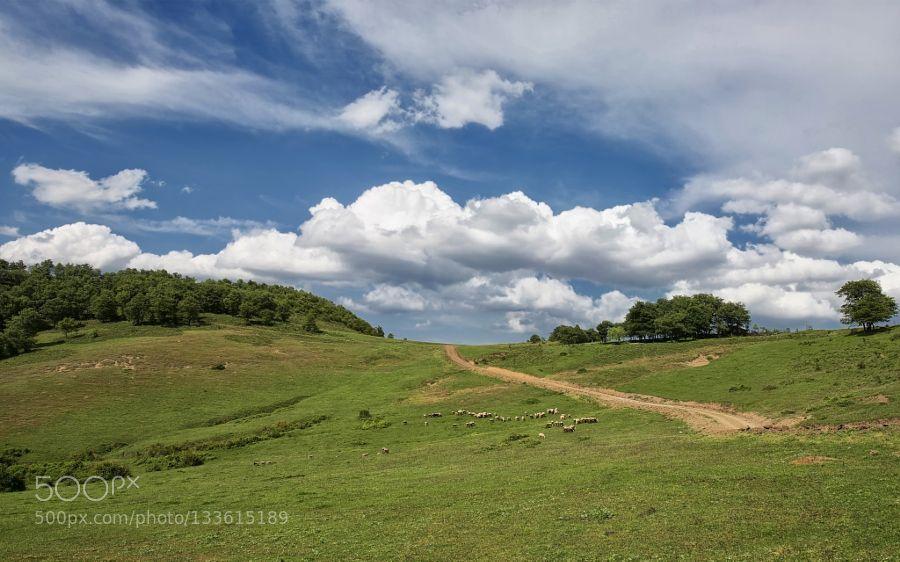 Popular on 500px : Plateau (Serdivan/Turkey) by ismailcalli
