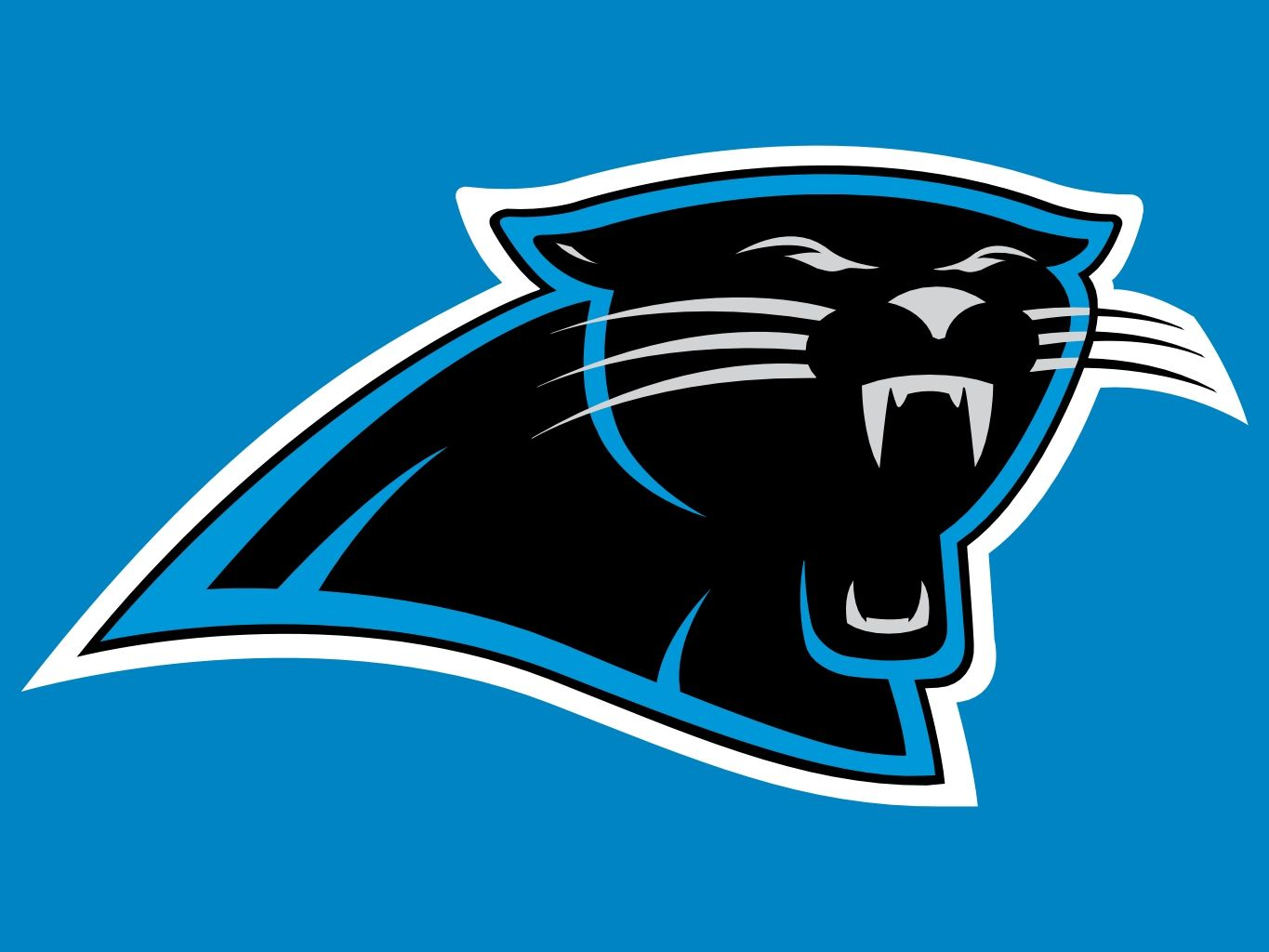 NFL Commentary: The Carolina Panthers, Sleeper In the NFC, or Overrated? |  Nfl carolina panthers, Carolina panthers football, Carolina panthers logo