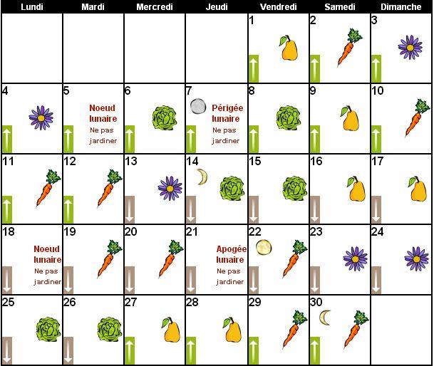 calendrier lunaire pour jardiner avec la lune jardin pinterest calendrier lunaire. Black Bedroom Furniture Sets. Home Design Ideas