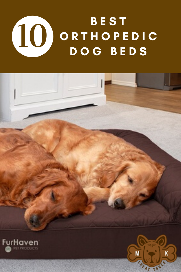 10 Best Orthopedic Dog Beds Reviewed and Ranked March