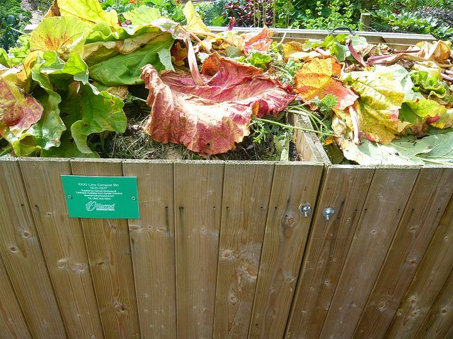 Common Compost Mistakes