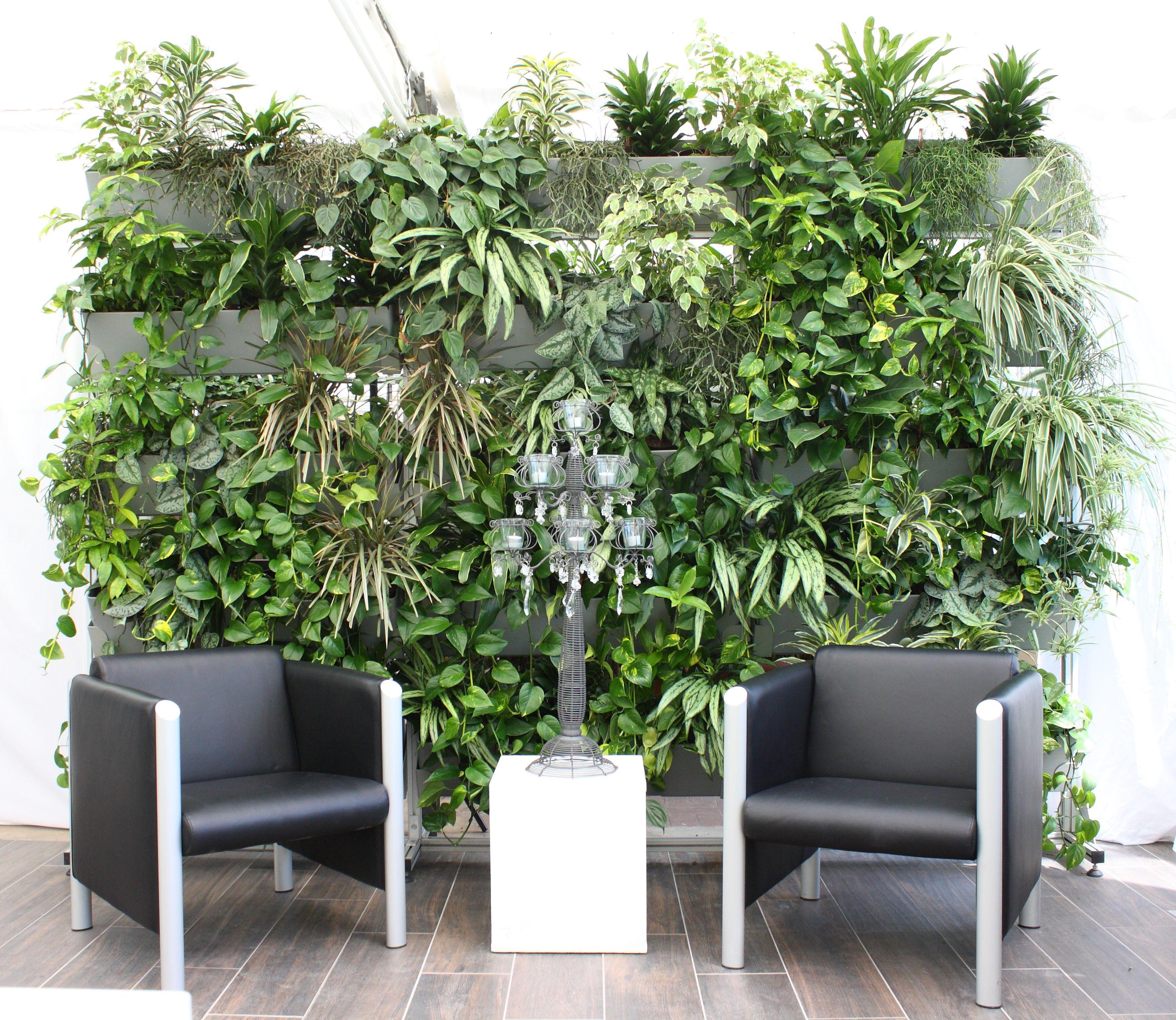 Pflanzenwand im Wartebereich, begrünte Lobby   Pflanzenwand ...