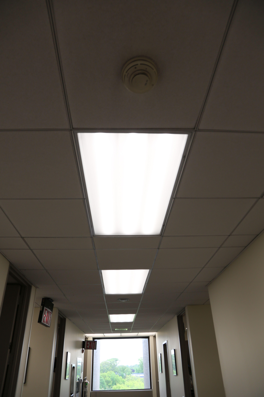 Education Energy Focus Led Lights Education