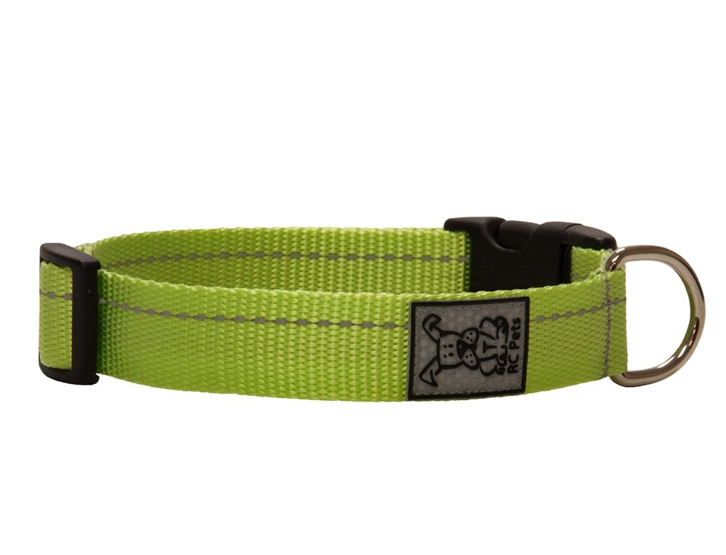 Lime Primary Clip Collar Pet Fashion Pet Boutique Pet Collars