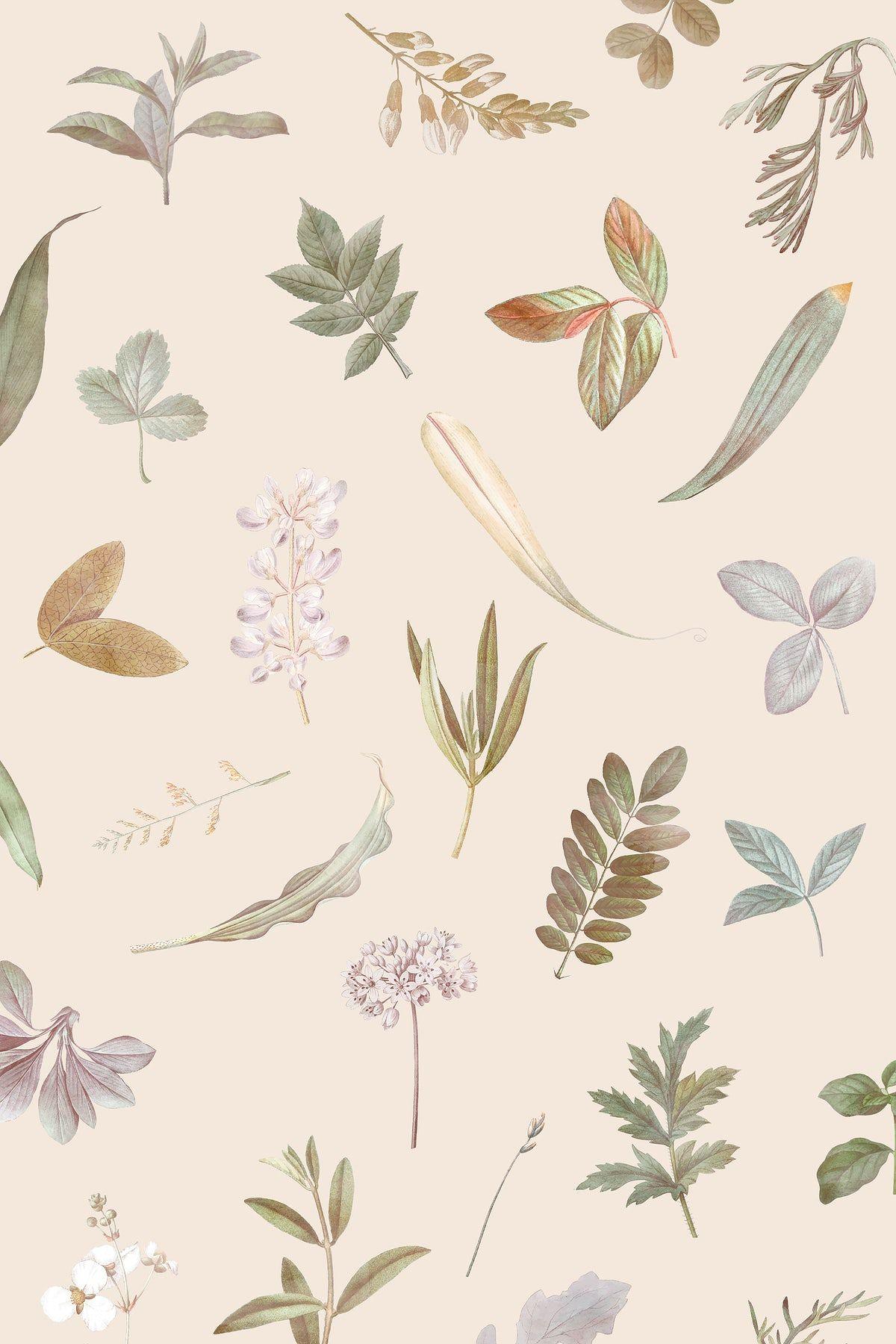 Beige Aesthetic Wallpaper Ipad