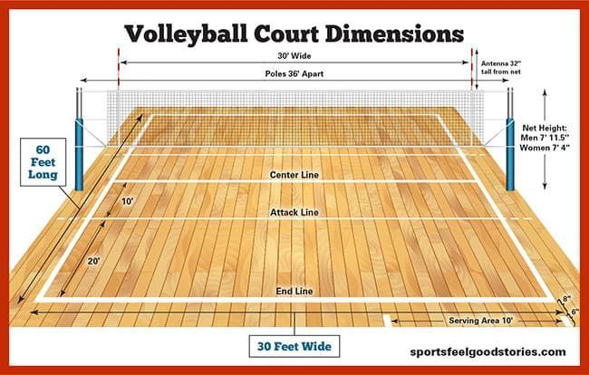 Volleyball Court Dimensions, Net Size and Height in 2020 ...