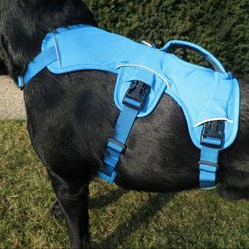 Ruffwear Web Master Escape Proof Dog Harness Dog Harness Diy