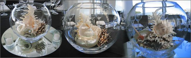 Shell table decor party themes pinterest shell centerpieces shell table decor junglespirit Choice Image
