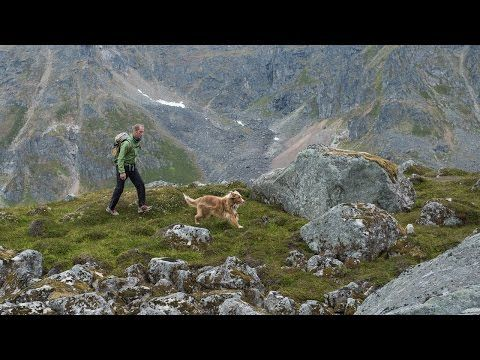 Unconditional Stories: Sky & Paul- A man and his Avalanche dog.