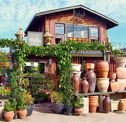 Laguna Nursery Orange County This Site Is Great Resource For Finding A Near You