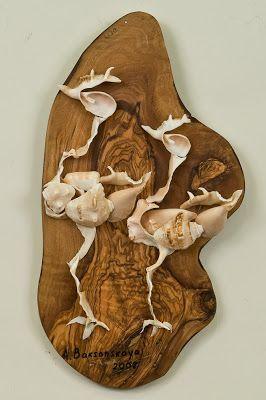 Seashell birds