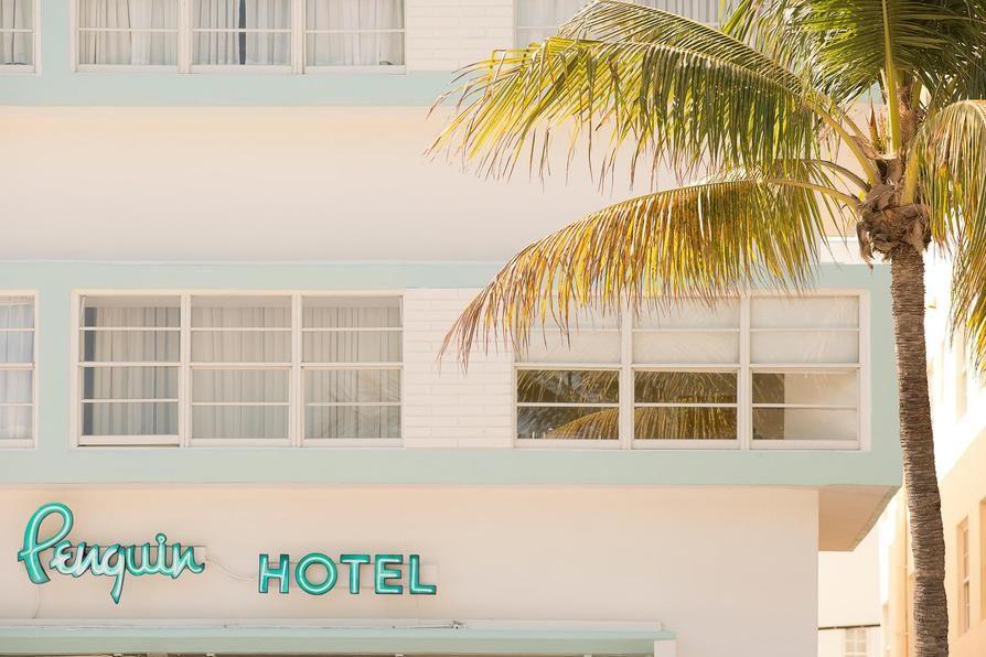 The Penguin Hotel In Miami Art