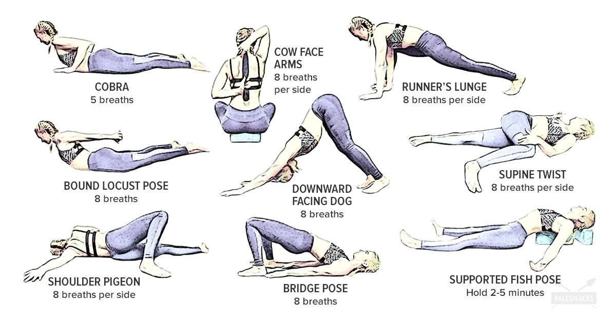 9 Yoga Poses To Reverse Bad Posture Caused By Sitting Basic Yoga Poses Easy Yoga Poses Bad Posture